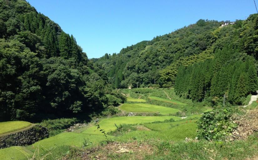 移住計画:松・竹・梅